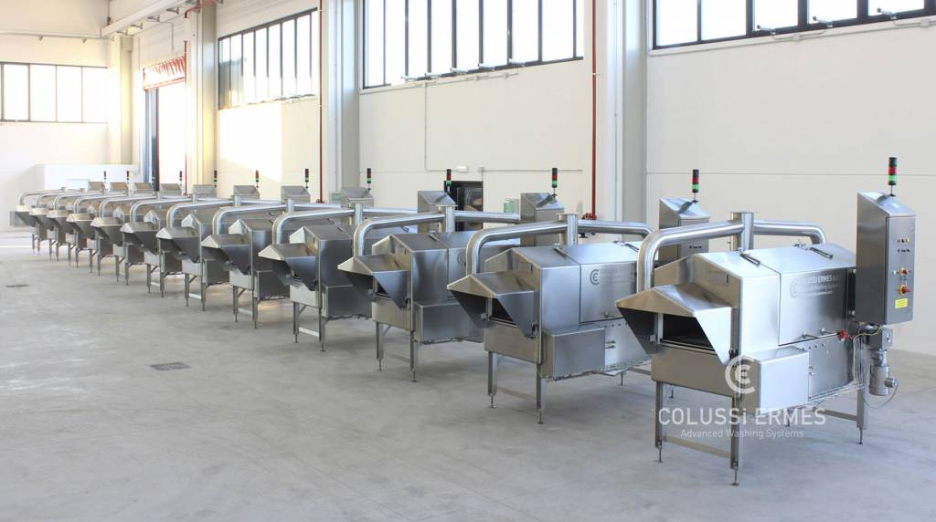 Instalación para la desinfección de embutidos - 2 - Colussi Ermes
